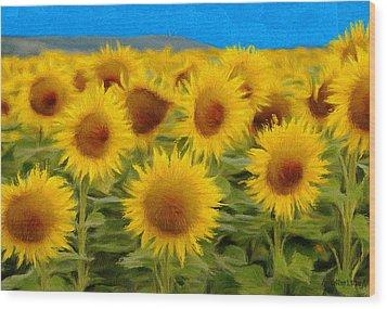 Sunflowers In The Field Wood Print by Jeff Kolker