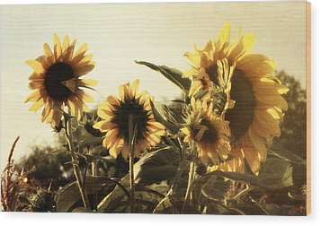 Wood Print featuring the photograph Sunflowers In Tone by Glenn McCarthy Art and Photography