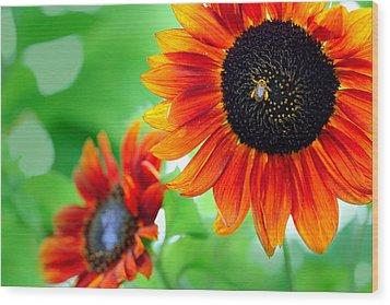 Sunflowers  Wood Print by Mark Ashkenazi