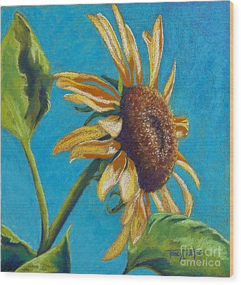 Sunflower's Shine Wood Print by Tracy L Teeter