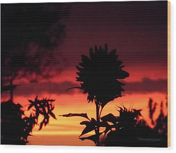 Sunflower's Sunset Wood Print