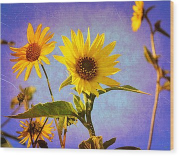 Wood Print featuring the photograph Sunflowers - The Arrival by Glenn McCarthy Art and Photography