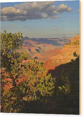 Wood Print featuring the photograph Sunkissed Afternoon by Stephen  Vecchiotti