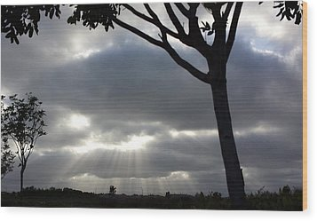 Sunlit Gray Clouds At Otay Ranch Wood Print by Karen J Shine