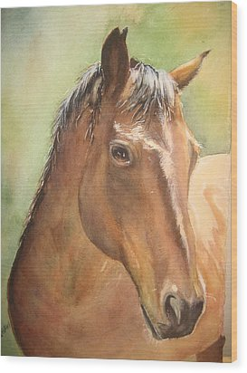 Sunlit Horse Wood Print by Patricia Pushaw