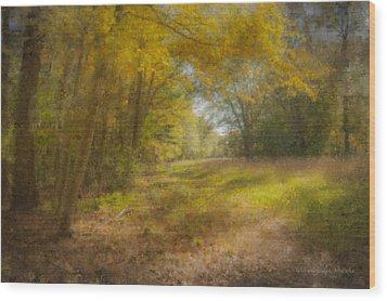 Sunlit Meadow In Borderland Wood Print