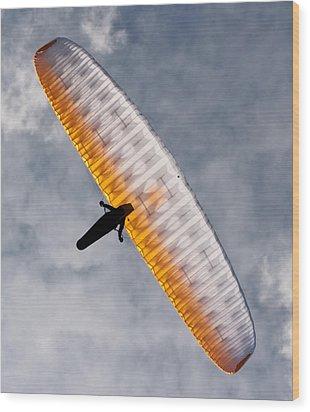 Sunlit Paraglider Wood Print