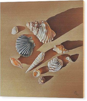 Wood Print featuring the drawing Sunlit Shells by Elena Kolotusha