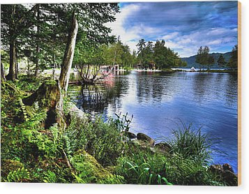 Wood Print featuring the photograph Sunlit Shore At Covewood by David Patterson