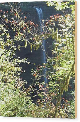Wood Print featuring the photograph Sunlite Silver Falls by Thomas J Herring