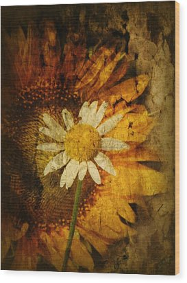 Sunny Antiqued Wood Print by Tingy Wende