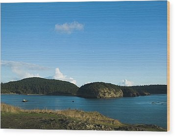 Wood Print featuring the photograph Sunny Day At Bowman Bay Park by Yulia Kazansky