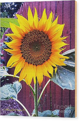 Sunny Day Wood Print by MaryLee Parker