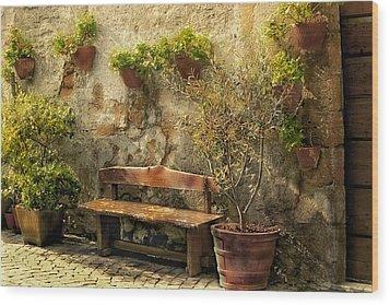 Sunny Italian Afternoon Wood Print by Lynn Andrews