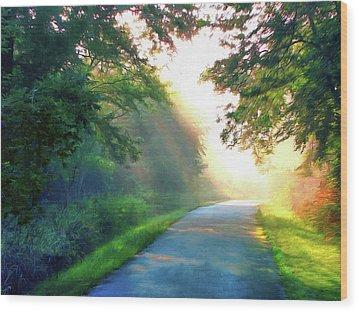 Sunny Trail Wood Print by Cedric Hampton