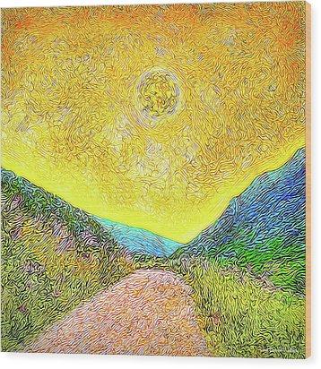 Sunny Trail - Marin California Wood Print by Joel Bruce Wallach