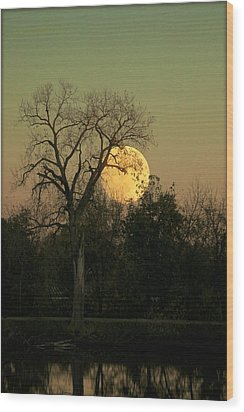 Wood Print featuring the photograph November Supermoon  by Chris Berry