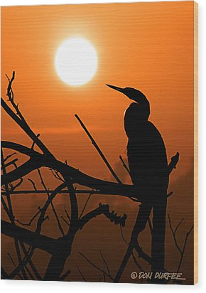 Wood Print featuring the photograph Sunrise Anhinga by Don Durfee