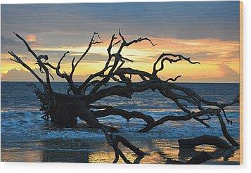 Sunrise At Driftwood Beach 1.1 Wood Print