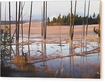 Sunrise At Fountain Paint Pots, Yellowstone National Park, Usa Wood Print