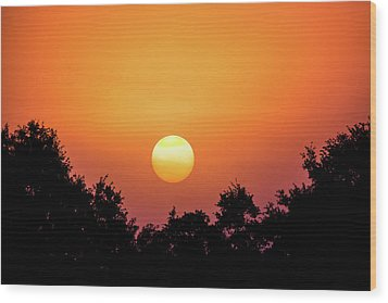 Wood Print featuring the photograph Sunrise Bliss by Shelby Young