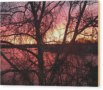Sunrise Wood Print by Cassandra Donnelly
