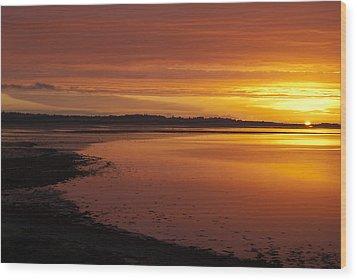 Sunrise Dornoch Firth Scotland Wood Print by Sally Ross
