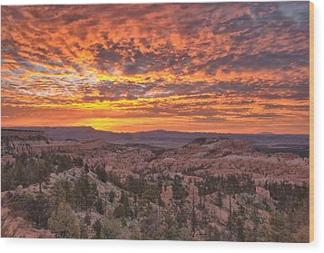 Wood Print featuring the photograph Sunrise Explosion by Stephen  Vecchiotti