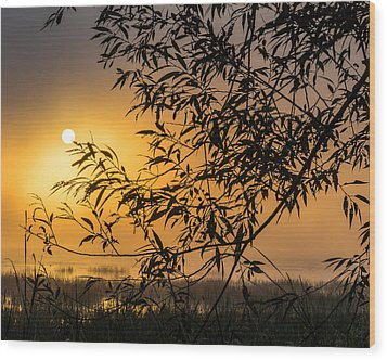 Sunrise Fog Wood Print