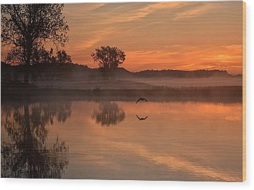 Sunrise Goose Wood Print
