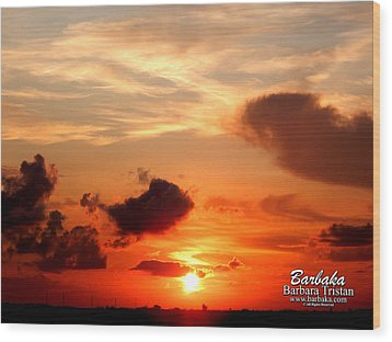 Sunrise In Ammannsville Texas Wood Print by Barbara Tristan
