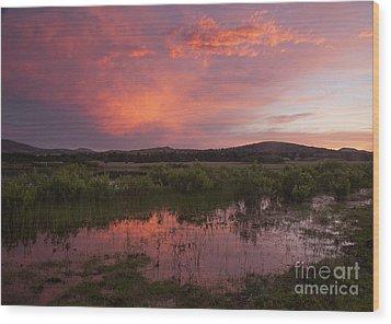 Sunrise In The Wichita Mountains Wood Print by Iris Greenwell