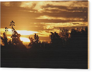 Wood Print featuring the photograph Sunrise by Ivete Basso Photography