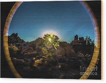 Sunrise Joshua Tree National Park Wood Print
