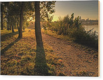 Sunrise On Kaw Point Wood Print by Don Wolf