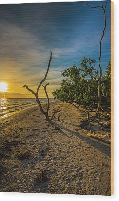 Wood Print featuring the photograph Sunrise On Lighthouse Beach by Steven Ainsworth