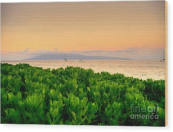 Wood Print featuring the photograph Sunrise On Maui by Kelly Wade