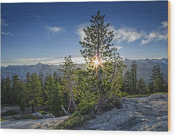 Sunrise On Sentinel Dome Wood Print by Rick Berk