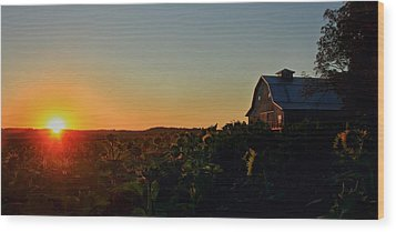Wood Print featuring the photograph Sunrise On The Farm by Chris Berry