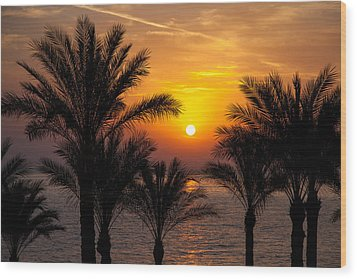 Sunrise Over The Red Sea Wood Print by Jane Rix