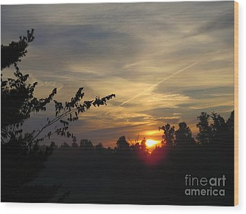 Sunrise Over The Trees Wood Print