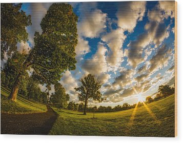 Wood Print featuring the photograph Sunrise Path At Meadows Edge by Chris Bordeleau