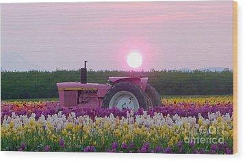 Sunrise Pink Greets John Deere Tractor Wood Print