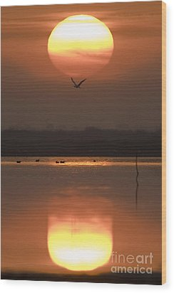 Sunrise Reflection Wood Print