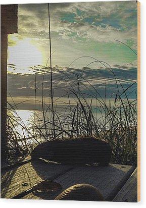 Sunrise Sea Shells Wood Print