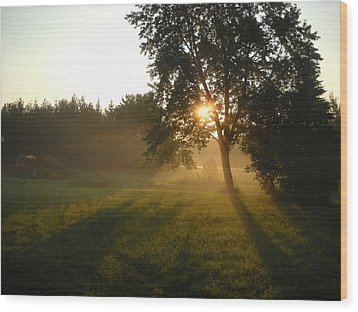 Sunrise Shadows Through Fog Wood Print
