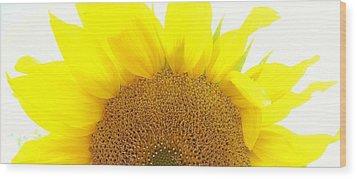 Sunflower Sunrise Wood Print