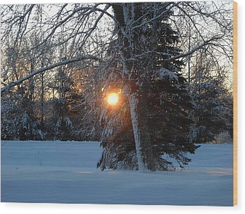 Sunrise Through Branches Wood Print