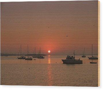 Sunrising Wood Print by Judy  Waller