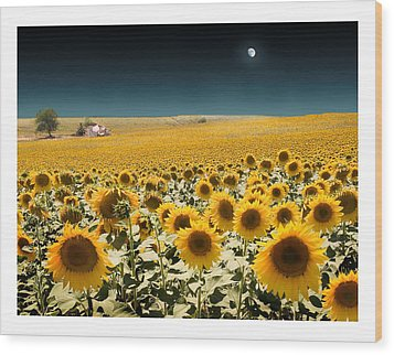 Suns And A Moon Wood Print by Mal Bray